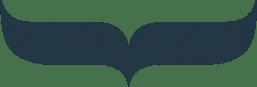 WDC blue fin logo